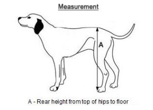 How to Measure your pet dog wheelchairs india
