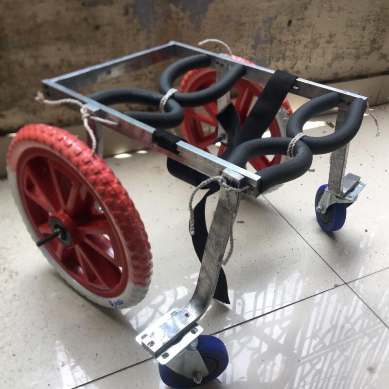 Mint-L 4 full support labrador german shepherd rottweiler mintbowl dog wheelchairs india